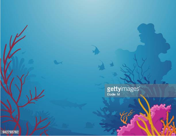 sea life - coral colored stock illustrations