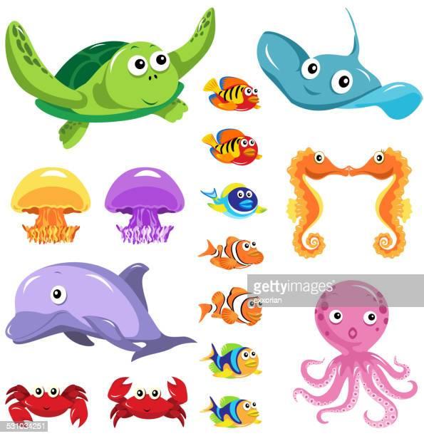 illustrations, cliparts, dessins animés et icônes de mer lifes éléments graphiques - crabe