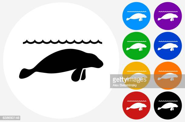Sea Lions Icon on Flat Color Circle Buttons