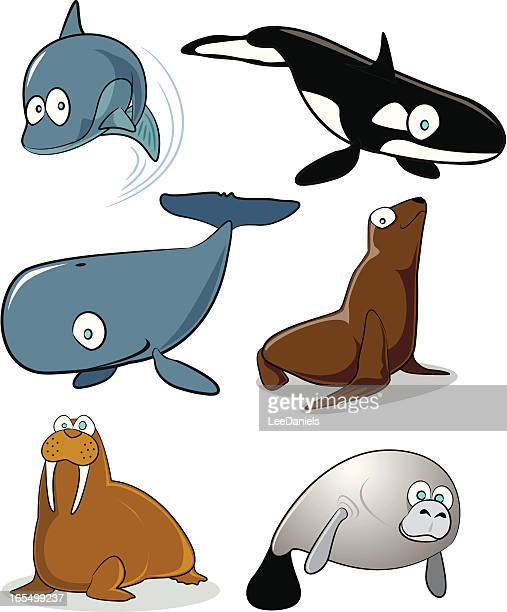 Sea Mammals Cartoon Collection