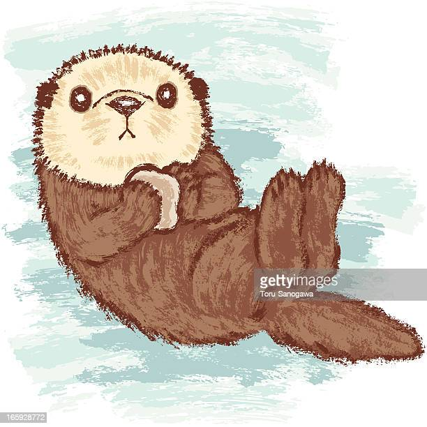 sea otter stock illustrations and cartoons