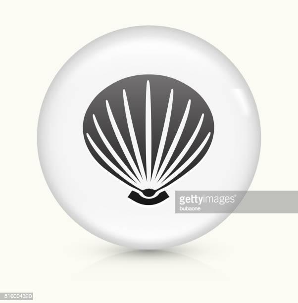 Sea Shell icon on white round vector button