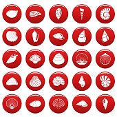 Sea shell icons set vetor red