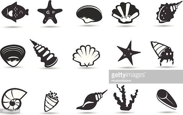 illustrations, cliparts, dessins animés et icônes de sea shell symboles - crabe