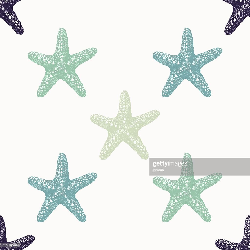 Sea stars of various colors arranged on a white background