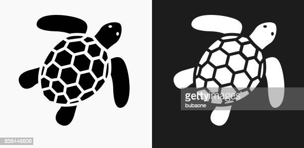 Sea Turtle Icon on Black and White Vector Backgrounds