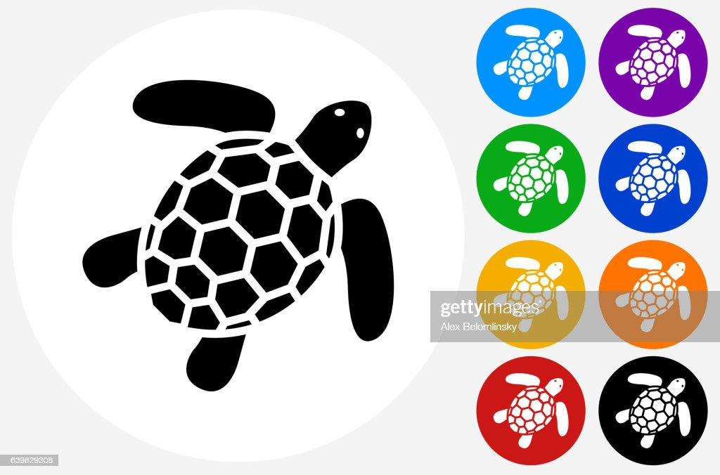Sea Turtle Icon on Flat Color Circle Buttons
