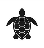 Sea turtle icon