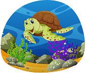 Sea turtle swimming under the sea