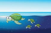 Sea turtles swimming in the ocean