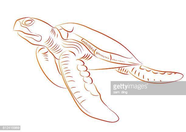 sea turtles - sea turtle stock illustrations