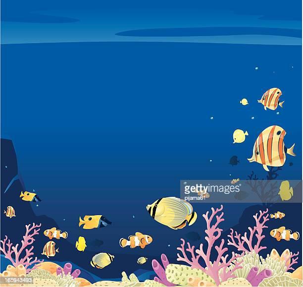 sea - anemonefish stock illustrations, clip art, cartoons, & icons