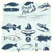 Seafood labels, fish packaging design, fishing logo elements