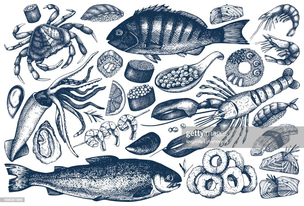 seafood outlines collection