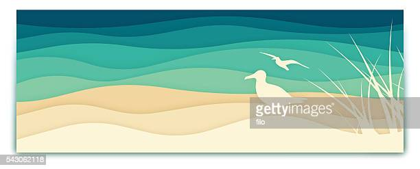 seagull ocean banner - coastline stock illustrations