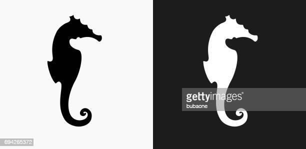 ilustrações de stock, clip art, desenhos animados e ícones de seahorse icon on black and white vector backgrounds - cavalo marinho