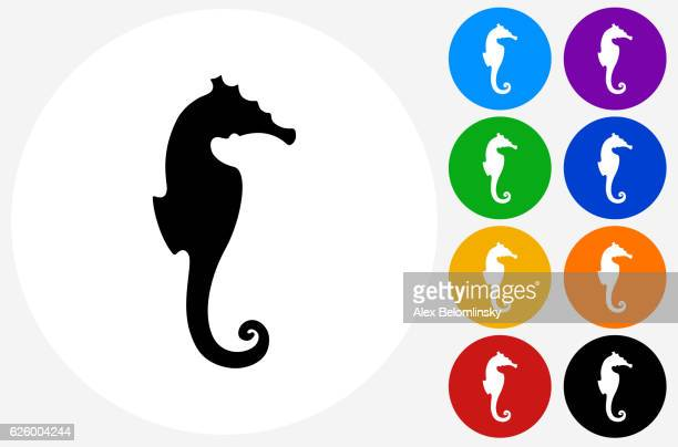 Seahorse Icon on Flat Color Circle Buttons
