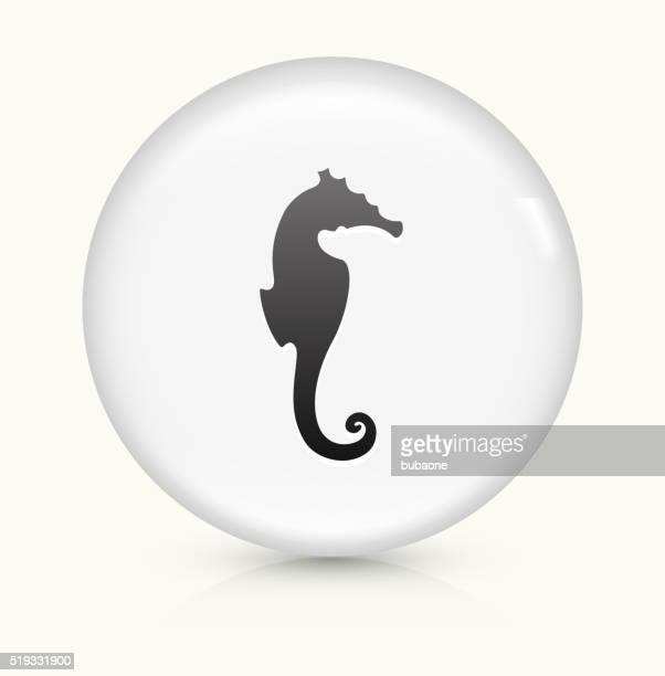 Cavalo-marinho-ícone num botão de vetor arredondado branco