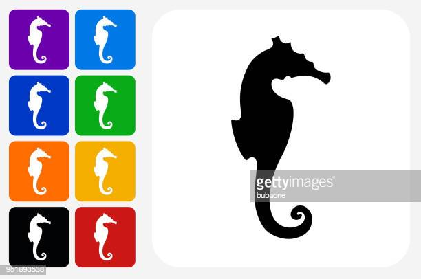 Seahorse Icon Square Button Set