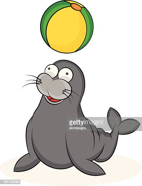 Seal Cartoon