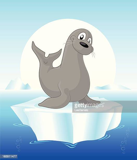 Seal on an iceberg cartoon