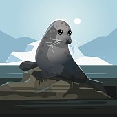 Seal stained with oil. Pollution environment concept