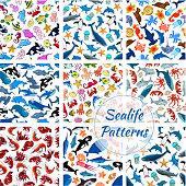 Sealife seamless vector pattern of cartoon fish