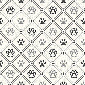 Seamless animal pattern of paw footprint in frame and polka