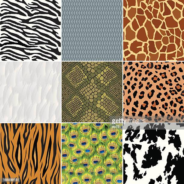 seamless animal wallpapers (backgrounds) - animal scale stock illustrations, clip art, cartoons, & icons
