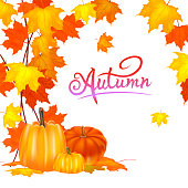 http://www.istockphoto.com/vector/seamless-autumn-background-red-and-yellow-pumpkins-and-autumn-leaves-gm960496454-262285396