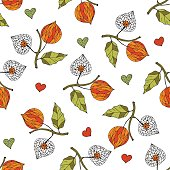 Seamless autumn vector pattern with physalis