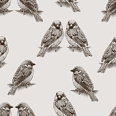 Seamless background of the city sparrows