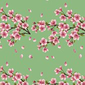 Seamless background with branch of cherry tree