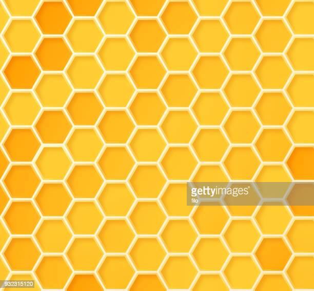 illustrations, cliparts, dessins animés et icônes de modèle de nid d'abeille ruche transparente - ruche