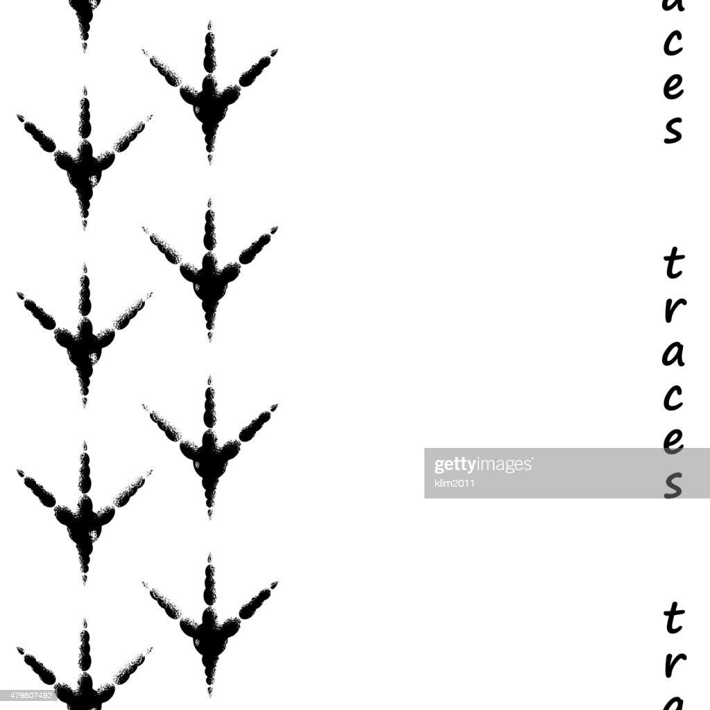 Seamless bird footprints