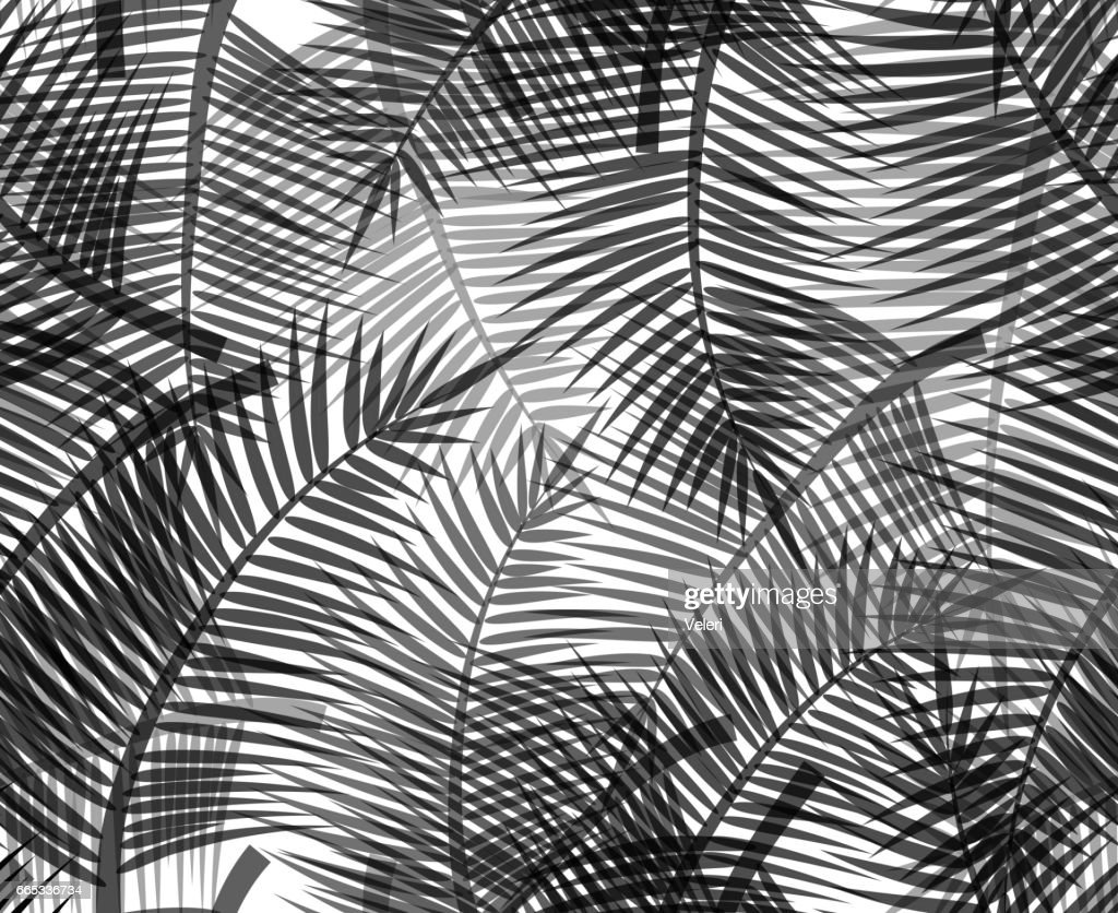 Seamless black and white texture with silhouettes of branches of palm trees on white background. Vector pattern for wrapping paper, wallpaper, fabrics and your design