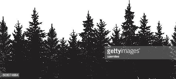 Seamless Black Forest Background