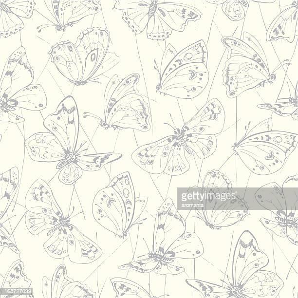ilustrações, clipart, desenhos animados e ícones de sem costura borboletas - lepidóptero