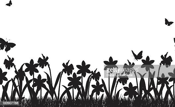 seamless daffodils and grass border - daffodil stock illustrations, clip art, cartoons, & icons