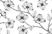 Seamless Dogwood flower pattern background. Black and white with drawing line art illustration.
