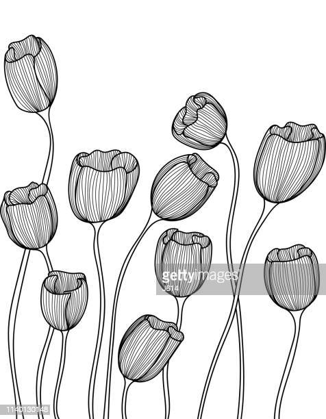 seamless doodle flowers - black and white nature stock illustrations