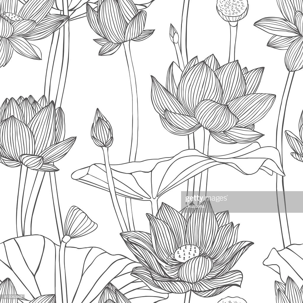 Seamless floral vector pattern lotus  flowers