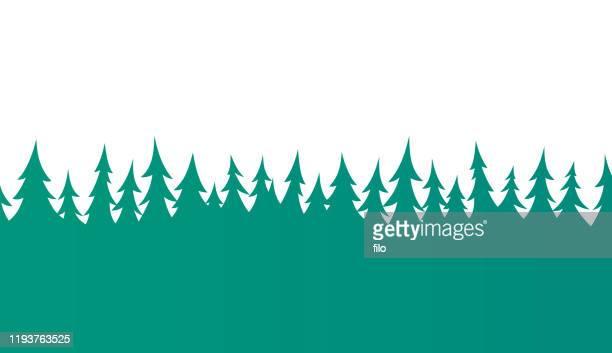 bildbanksillustrationer, clip art samt tecknat material och ikoner med sömlös träd gräns för skogs tall - trädtopp