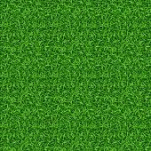Seamless green grass vector pattern