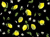 Seamless high quality pattern with lemon fruits and citrus flowers in vector drawing