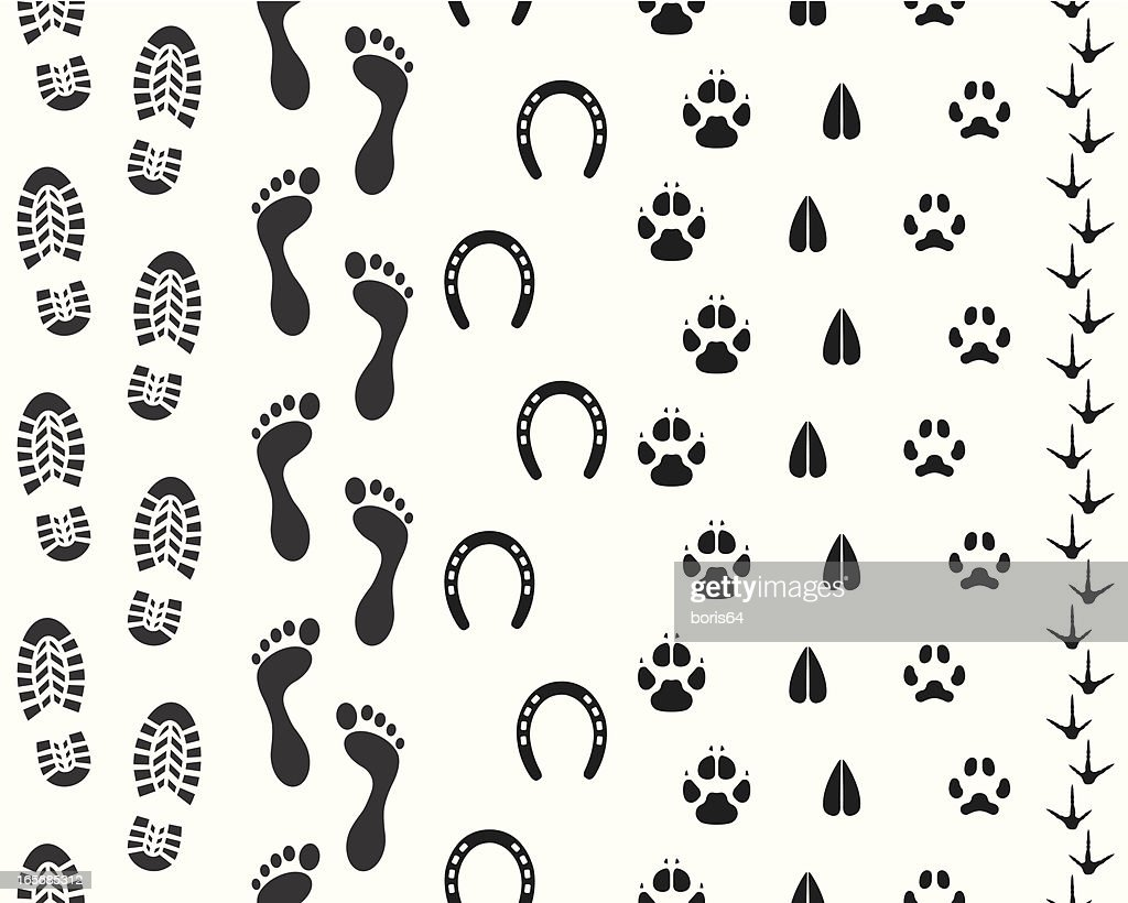 Seamless Human and Animal Footprints