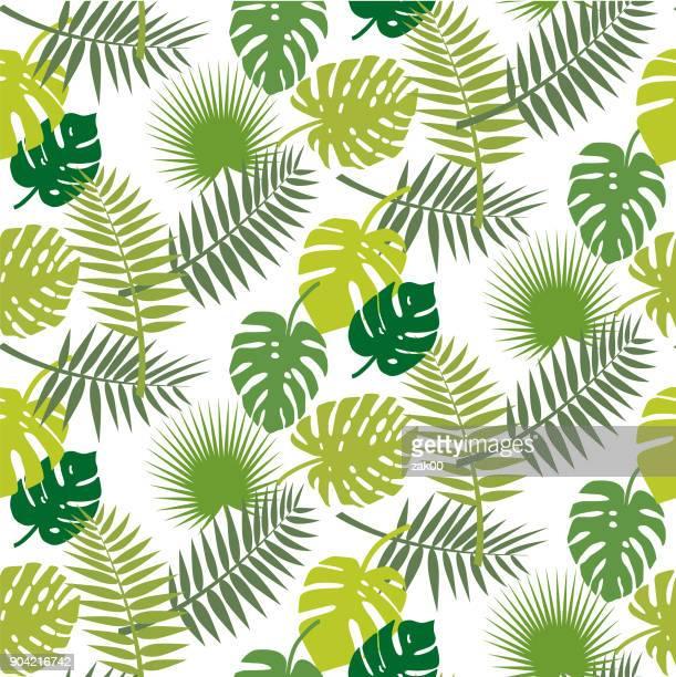 illustrations, cliparts, dessins animés et icônes de fond de feuilles sans soudure - feuille de palmier