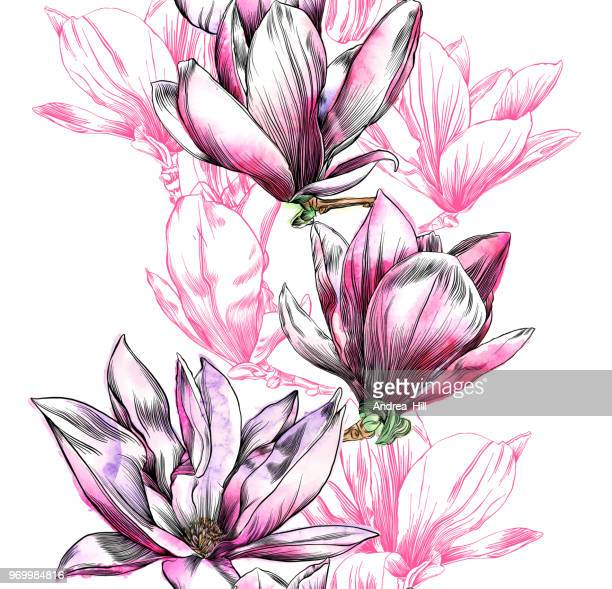 seamless magnolia flower pattern with watercolor and pen and ink elements - pen and ink stock illustrations