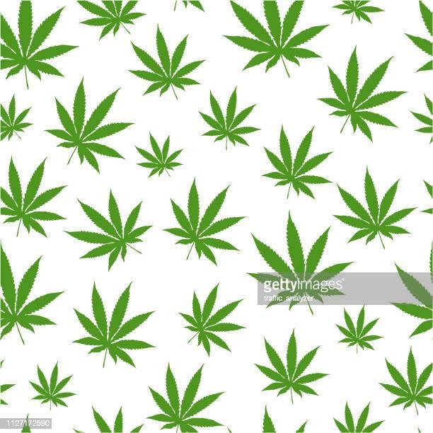 シームレスな大麻の歴史 - カンナビスサティバ点のイラスト素材/クリップアート素材/マンガ素材/アイコン素材