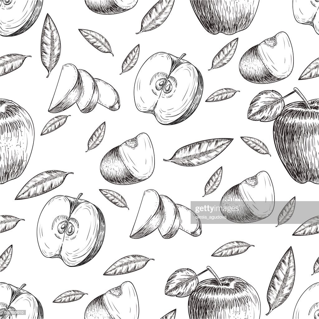 Seamless of hand drawn apple. Vintage sketch style illustration. Organic